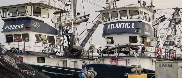 La pesca y todos sus encadenamientos productivos le hacen bien al país